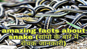 amazing facts about snake in hindi