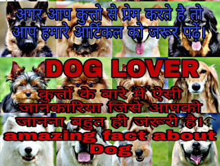 Amazing facts about Dog in hindi