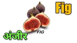 fruits name in hindi and english