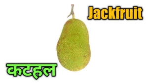 fruits name in english