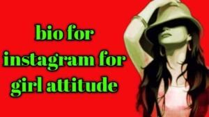 bio for instagram for girl attitude