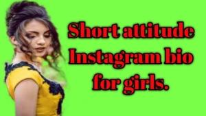 short attitude instagram bio for girls